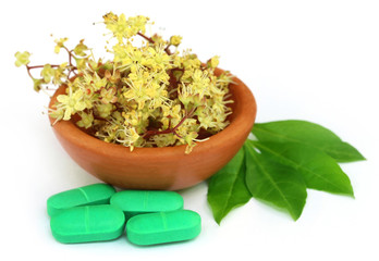 Henna leaves with flower and tablets