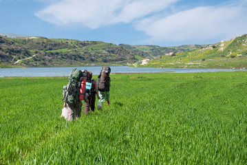 tourists with backpacks in deep green grass near sea