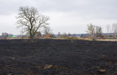 Spring landscape in Ukrainian countryside with burnt grass