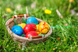 Easter eggs in basket on green grass.