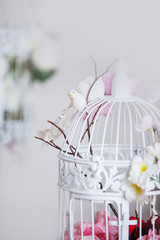 White decorative cage with beautiful flowers, close up