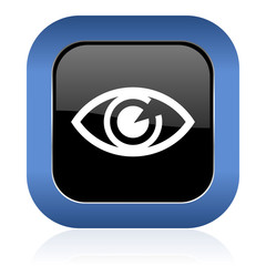 eye square glossy icon view sign