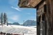 inlaid wooden bird house near mountain's chalet