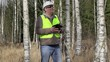 Forest engineer with tablet PC in birch grove