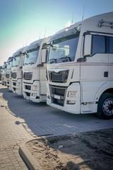LKW-Spedition, weiße LKW-Zugmaschinen in einer Reihe