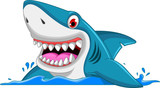 Fototapety angry shark cartoon