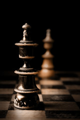 Chess. Two kings on chessboard.