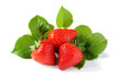 Strawberries isolated on white