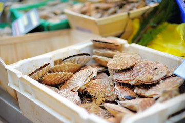 Fresh seafood for sale on fish market