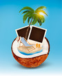 Vacation concept. Palm tree, photos and beach chair in a coconut