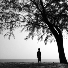 silhouette boy standing under the tree