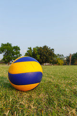 ball on green ground