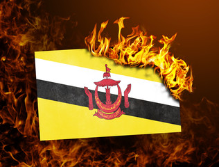 Flag burning - Brunei