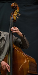 the contrabass player