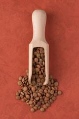 Wooden scoop with lentils