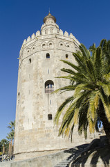 Torre del Oro, Sevilla. España.