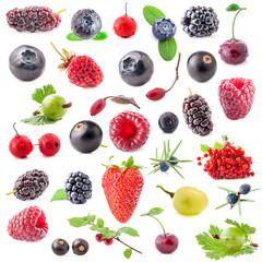 Collection of berry isolated on white background