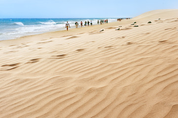 Seaside of Maspalomas. Grand Canary. Canary Islands