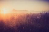 Vintage photo of morning foggy meadow in summer. Rural landscape - Fine Art prints