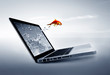Goldfish jump out of the monitor at ocean - 80135416