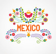 Mexico flowers, pattern and elements - 80136402