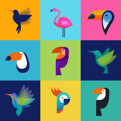 Tropical birds - set of vector icons