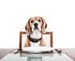 Leinwandbild Motiv Dog waiting for a dinner on the served table
