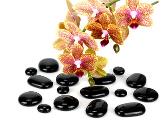 Zen pebbles balance..