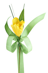 Yellow flower and green ribbon