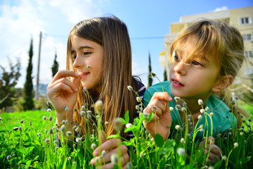 Two blond girls among wild flowers under the sun