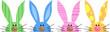 Bunny - 80147663