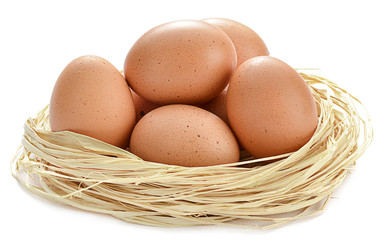 Eggs in a nest isolated on white background