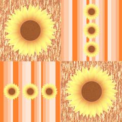 Sonnenblumen auf orange farbenen Streifen quadratisches Format