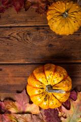 Autumn colorful pumpkins