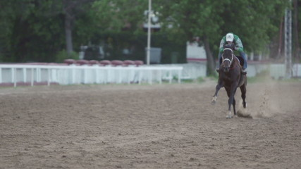 jockey and horse runs gallop, slow motion 240