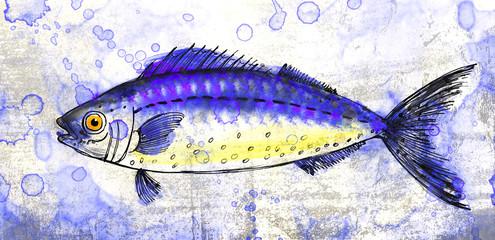Рыба. Акварельный рисунок.