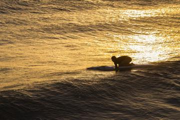 Lifesaving Paddling Rescue Craft Waves