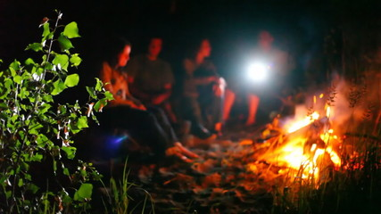 adult company has rest at fire on sand among bushes and grass