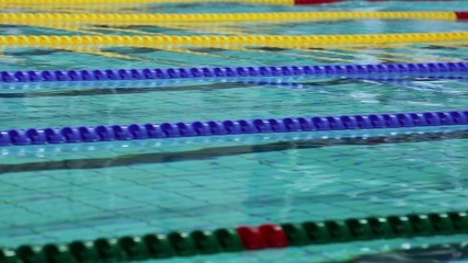 Swimmers jump into water and start swimming on back in basin