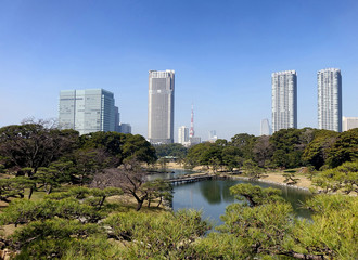 Nature with City of Tokyo