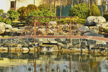 Фрагмент озера в парке