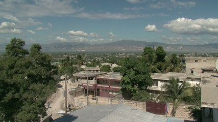 Haiti earthquake - view whit trees