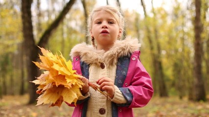Little girl holds maple leaves and tells story