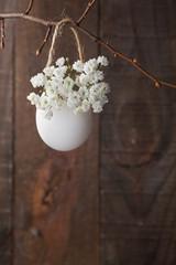 White baby's breath flowers (gypsophila) in egg shell.