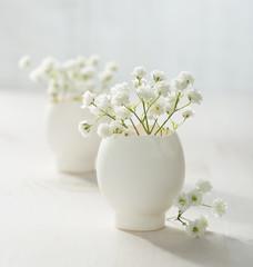 Bunch of white baby's breath flowers (gypsophila) in eggs shell.
