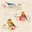 collection of cute birds. watercolor painting - 80184627