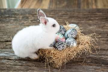 Cute white rabbit with Easter egg in nest