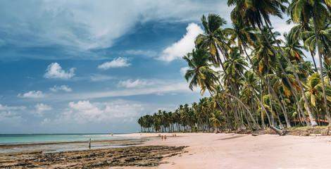 Carneiros beach near Recife, Pernambuco, Brazil.