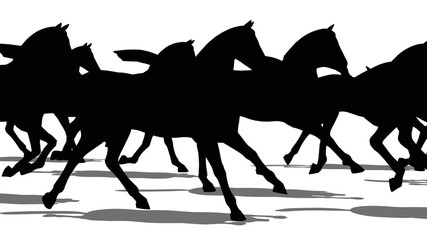 Silhouette horse moving, isolated on white background, loopable