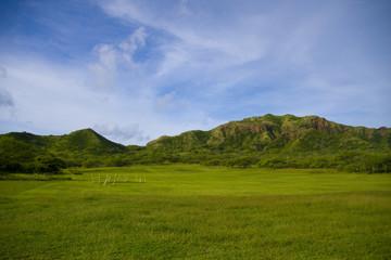 ハワイ 風景